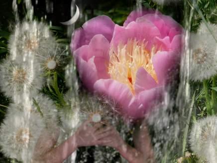 woman_and_nature_meditative